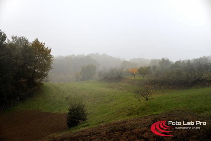 Parco dei Gessi di San Lazzaro